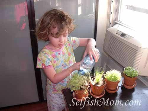 Fiona watering