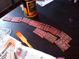 "Fiona's ""bricks"" drying on the table"