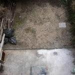 From junk heap to beautiful backyard