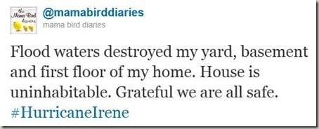 Hurricane Irene tweet