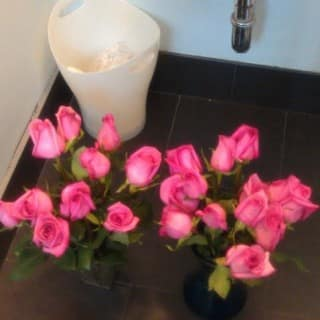 Today's Agenda: bathroom flowers edition