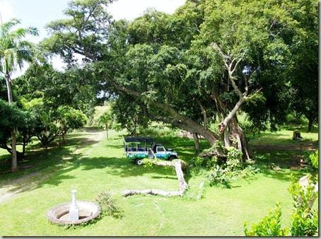 St. Kitts - Saturday (25)