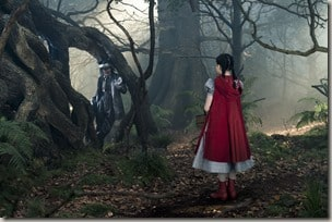 INTO THE WOODS