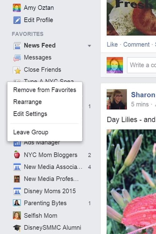 "Facebook Favorites list: ""Edit Settings"" button"