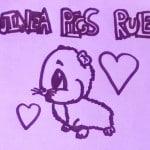 The Guinea Pigs Cometh