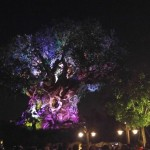 Everything New At Animal Kingdom This Summer