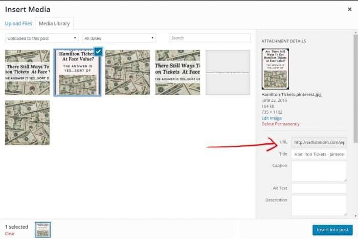 Pinterest URL screenshot
