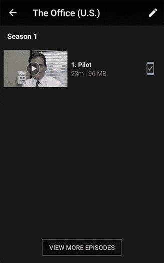 Netflix Downloads - My Downloads series view