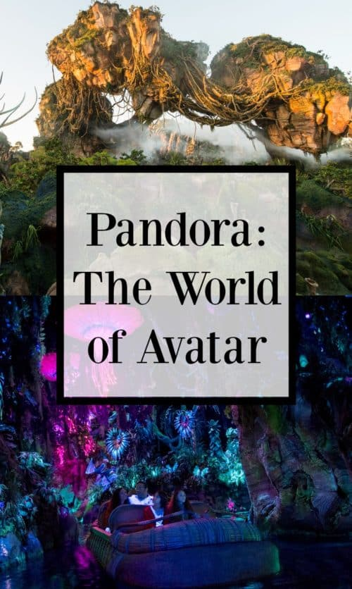 There is so much new stuff at Disney's Animal Kingdom it's crazy. They've already added nighttime shows and events, and now they're about to open Pandora: The World of Avatar! Whether you're a fan of the movie or not, this is going to be an incredible new area to visit. If you're traveling to Disney World this summer (or want to), check out all that's in store!