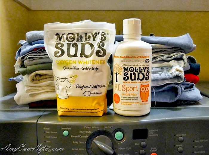Babbleboxx Fall Cleaning - Molly's Suds