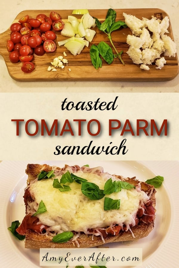 Looking for a healthy vegetarian alternative to a meatball sub? You need this hot, open-faced tomato sandwich recipe! My Toasted Tomato Parm Sandwich is hearty, cheesy, and filling. And even though it started with a chunky tomato sauce, I've adapted it to stay on the bread without falling off, so you won't need a fork! #vegetarian #recipe #tomatoes #healthy