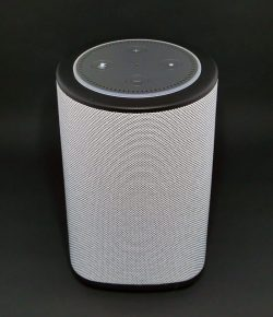 the Vaux cordless speaker with an Echo Dot in the top