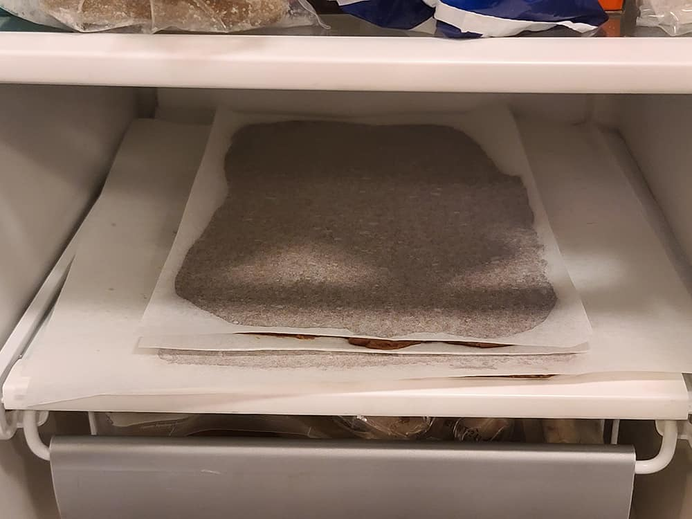 dough between parchment sheets in a freezer